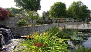 RomanPisa | Garden